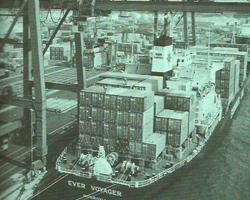 费力克斯托港1982年
